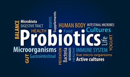 Prébiotiques et probiotiques pour faciliter la digestion !