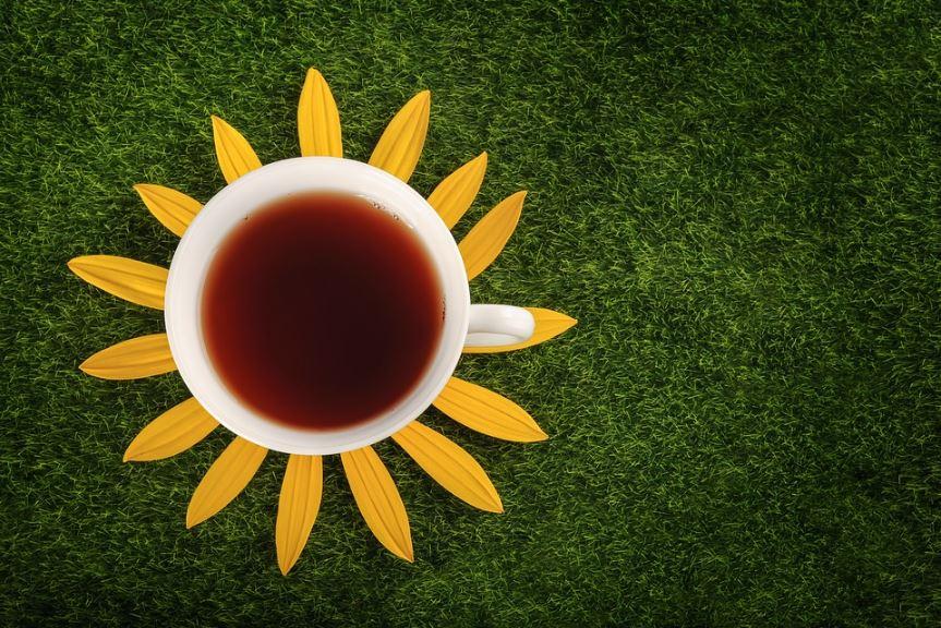 Le thé : une solution anti-âge