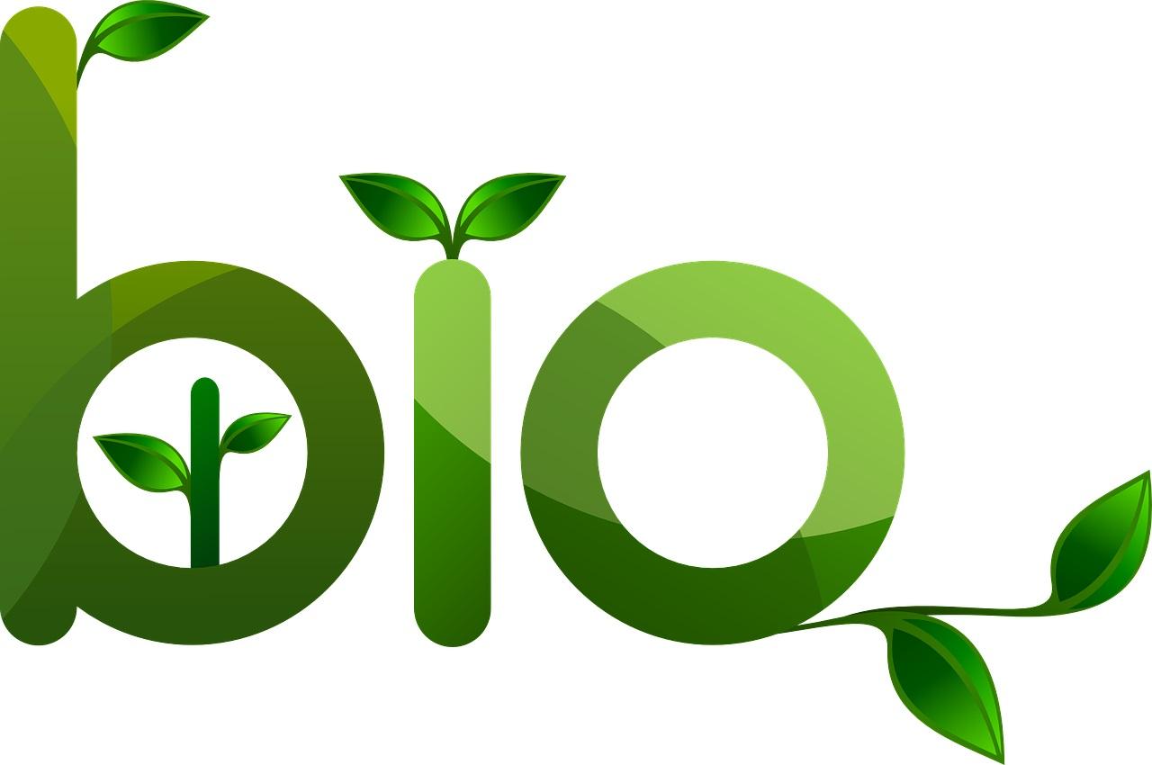 Tout sur les produits Bio