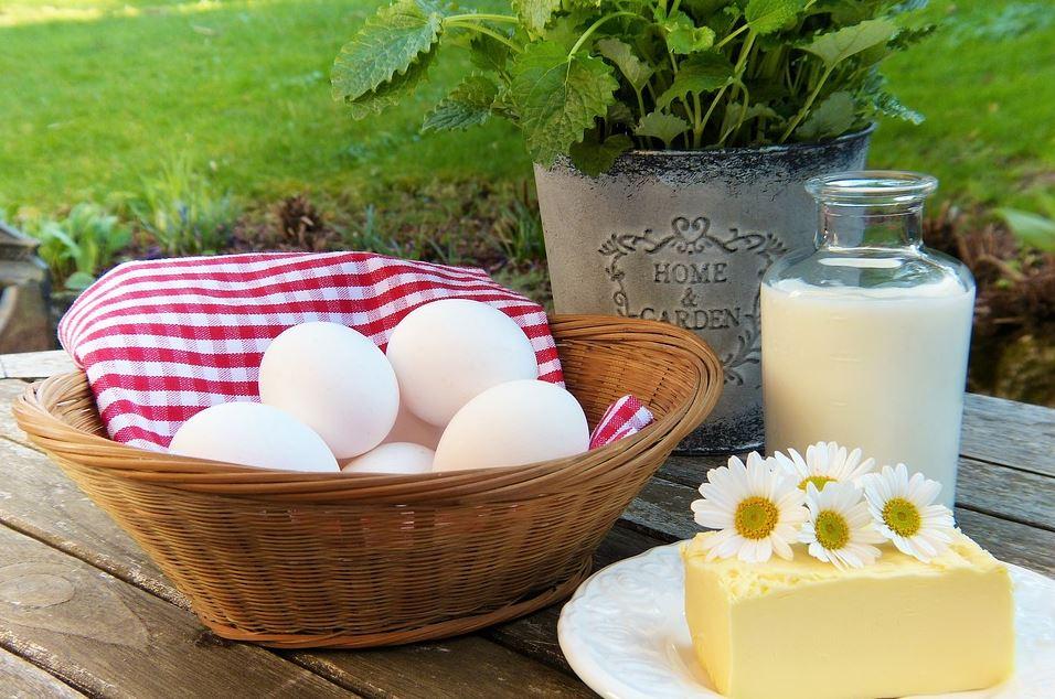 Focus sur les aliments riches en calcium